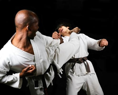African American Versus Caucasian Karate Fight(kumite) Hayashi Ha Style Black And Brown Belt Sport Series