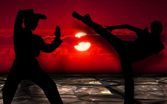 Learn More About Mental Training In A Martial Art